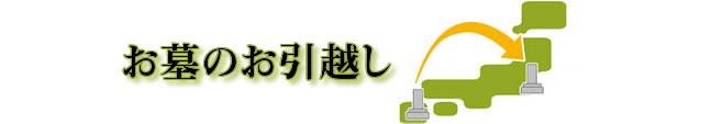 ohaka_hikkosi